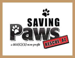 saving paws rescue